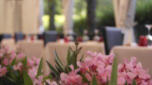 estate alla Trattoria l'Orchidea Puianello